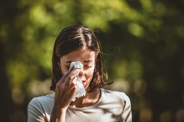 Фото №1 - Как отличить коронавирус от аллергии: отвечает врач