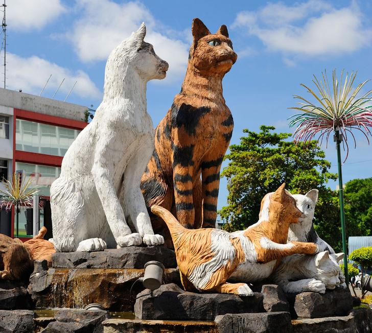 Фото №7 - Короли улиц: 9 памятников кошкам