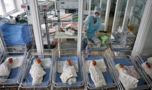 Фото №1 - Роддом на Вавиловых станет перинатальным центром клиники «АВА-Петер»