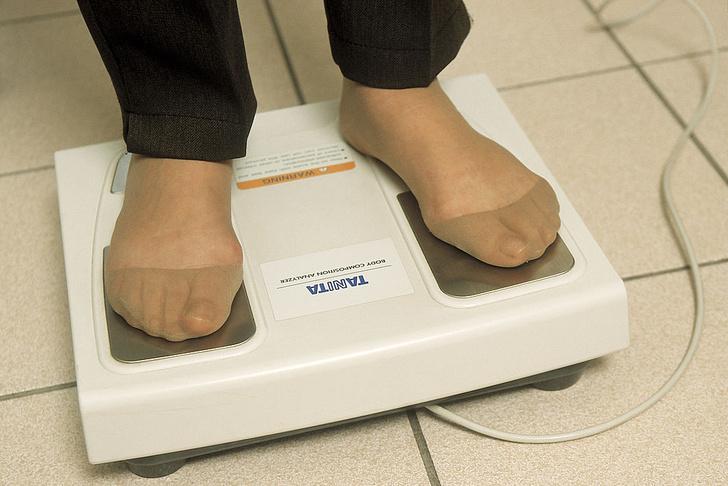 Фото №1 - Как лишний вес влияет на работу мозга