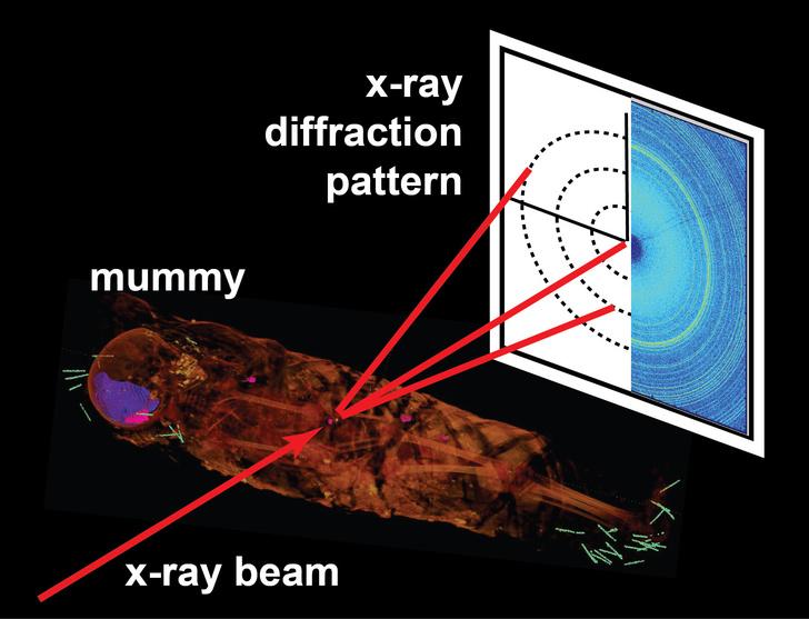 Фото №1 - Ученые предложили новый способ исследования мумий без вскрытия