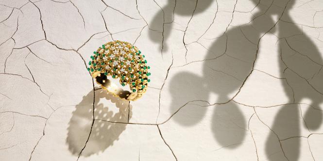 Фото №3 - Цветы пустыни: новая коллекция Cactus de Cartier