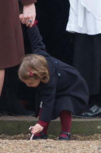 Фото №9 - Принцесса Шарлотта и принц Джордж снова в центре внимания