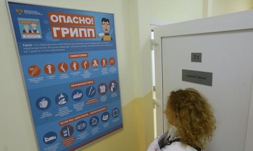 Фото №1 - Петербург достиг эпидпорога по гриппу и ОРВИ. В соседней Карелии он уже превышен