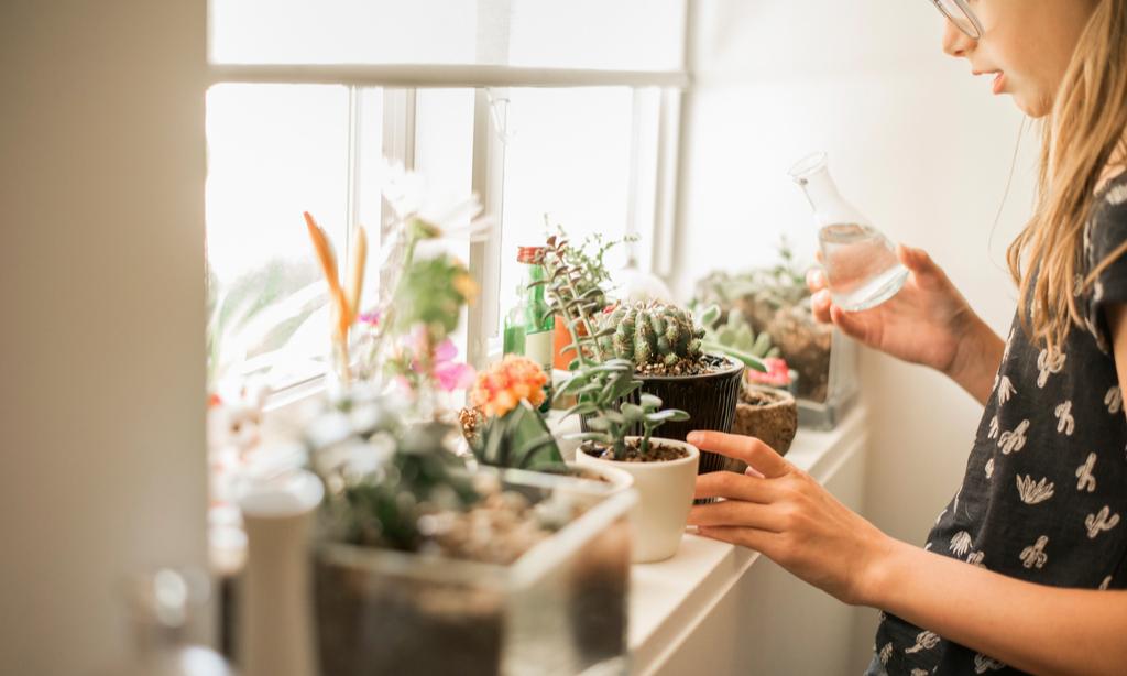 Поберегись! 55 самых ядовитых комнатных растений