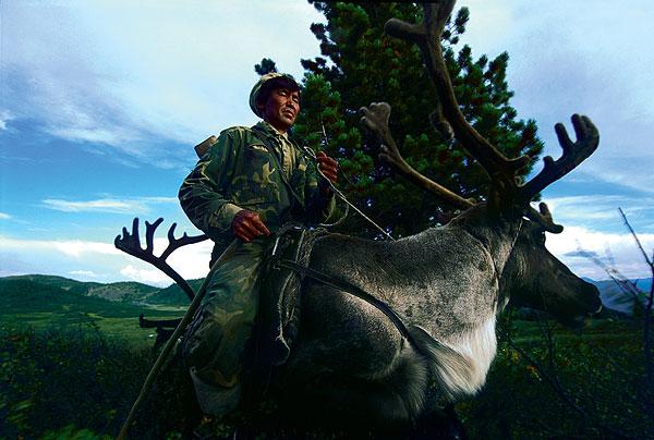 Фото №1 - Духи тайги: как живут оленеводы Тувы