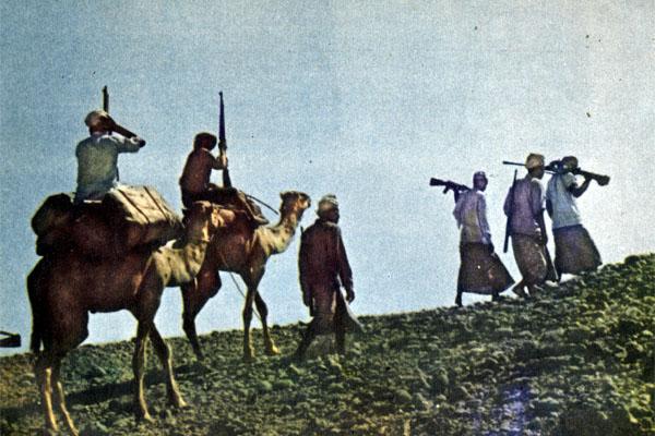 Фото №1 - В горах Дофара гремят выстрелы