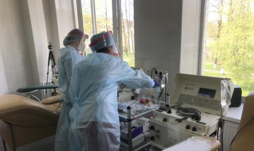 Фото №1 - После лечения плазмой одного петербуржца уже выписали домой, двое - выздоравливают