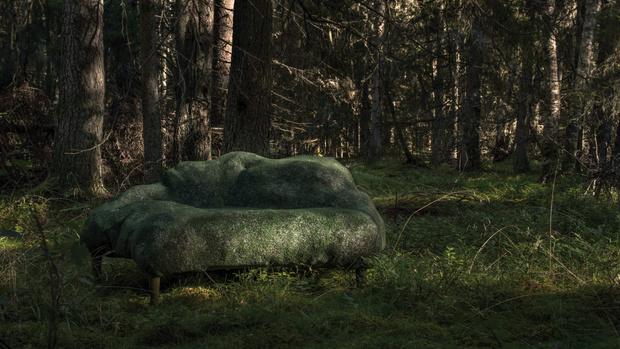 Фото №1 - Камень в лесу: совместный проект студии Front и Moroso