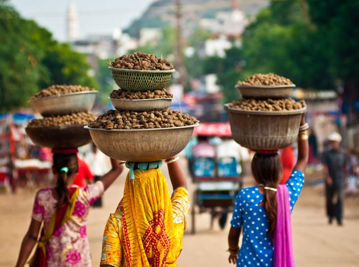 Фото №9 - В Индию за просветлением: жизнь в ашраме