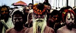 Фото №8 - Миф и реальность касты