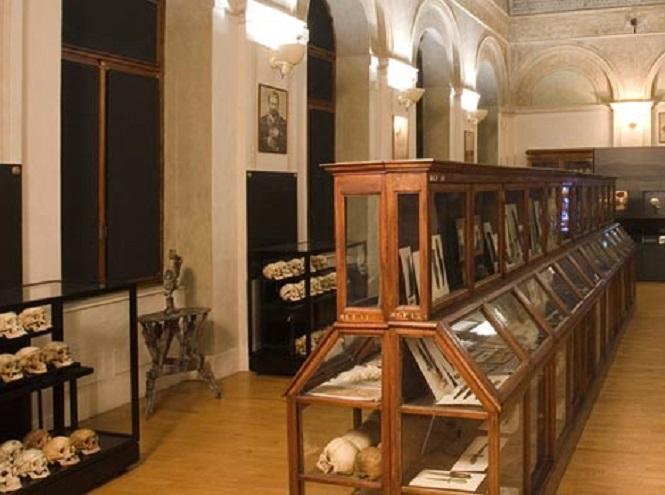 Фото №4 - Три музея Турина, в которых стоит побывать