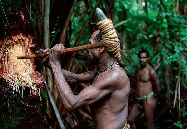Фото №5 - Высшее общество: индонезийское племя короваи