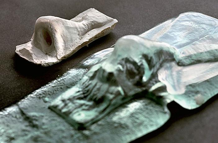 Фото №1 - Оранжерея органов, танцующие грибы и другие открытия