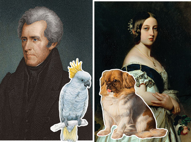 Фото №1 - Любимые питомцы королев, аристократов и политиков