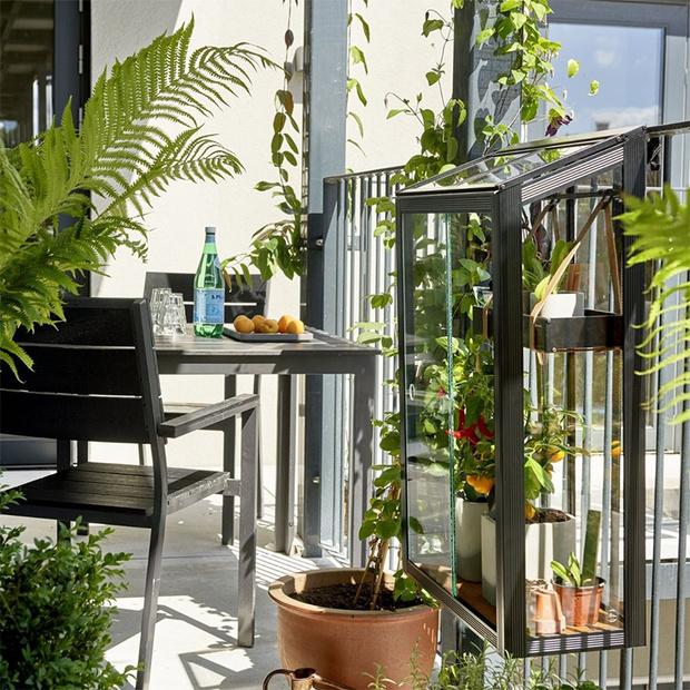 Фото №5 - Стильные мини теплицы для балконов и террас