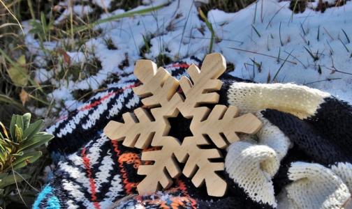 Фото №1 - Петербургские врачи: От теплой и бесснежной зимы неприятных сюрпризов не ждем