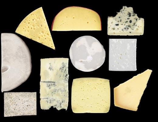 Фото №1 - Страны сыра