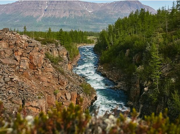 Фото №4 - Экспедиция по Енисею: открой для себя Сибирь