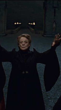 Фото №9 - 10 самых стильных образов в фильмах «Гарри Поттер»
