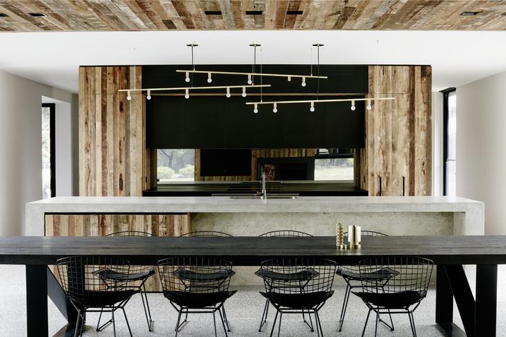 Фото №4 - Лесной царь: модернистский дом под Мельбурном