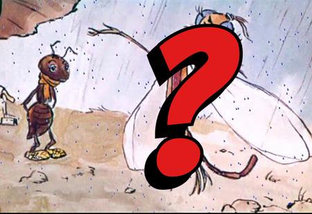 Знаешь ли ты, что на самом деле стрекоза в басне Крылова— вовсе не стрекоза?