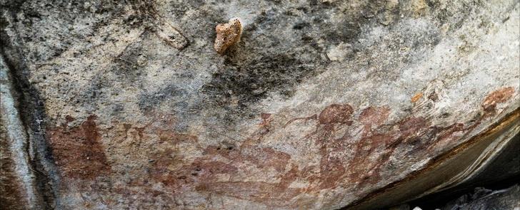 Фото №1 - В Танзании обнаружены загадочные наскальные рисунки