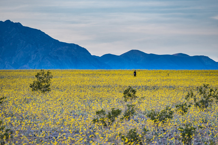 Фото №10 - Впадая в крайности: 10 самых необычных национальных парков на планете