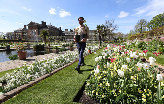 Фото №8 - Сад памяти Дианы: самая вдохновляющая причина попасть в Лондон
