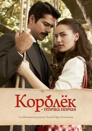 Фото №2 - «Великолепный век» и еще 5 турецких сериалов с Бураком Озчивитом