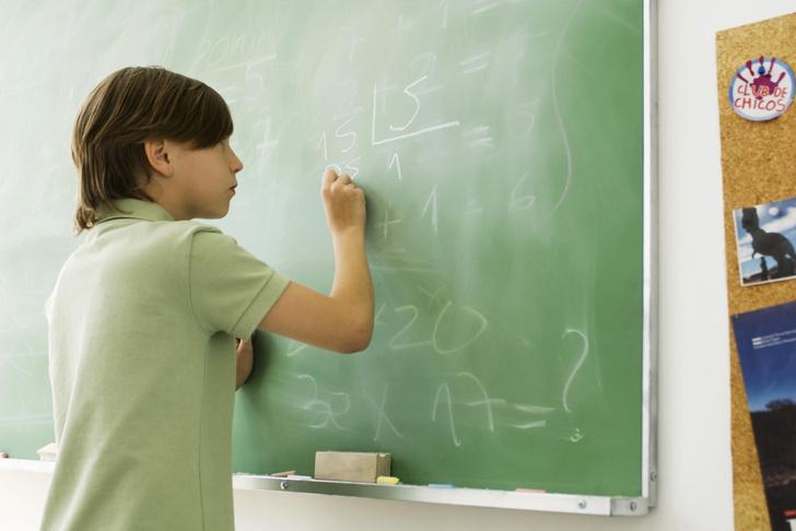 Фото №1 - Найден ген, «отвечающий» за математические способности