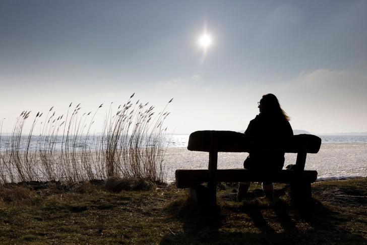 Фото №1 - Почему солнечный свет полезен для мозга