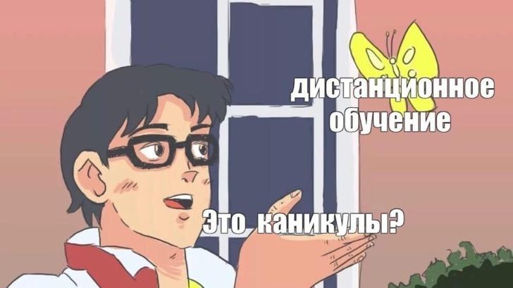 Фото №2 - Лучшие шутки и мемы про дистанционное обучение