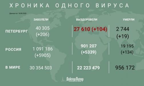 Фото №1 - За сутки у 206 петербуржцев выявили коронавирусную инфекцию