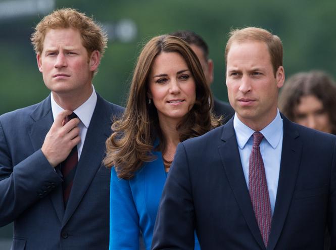 Фото №3 - Уильям, Кейт и Гарри не поедут на Олимпиаду из-за вируса Зика