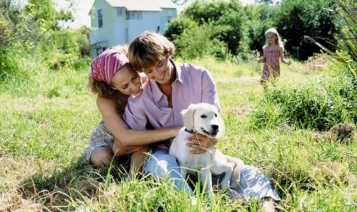 Фото №1 - От укусов клещей пострадали почти 7 тысяч петербуржцев