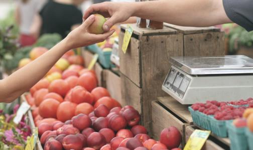 Фото №1 - Роскачество назвало 10 ядовитых продуктов, которые есть почти в каждом доме