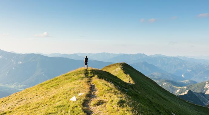«Зеленая терапия»: лечебная сила природы
