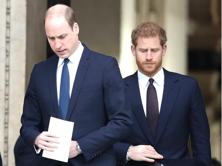 Фото №1 - Главная причина, почему Гарри и Уильям не могут наладить отношения