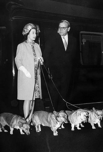 Фото №2 - Елизавета II и ее корги: история главной королевской страсти