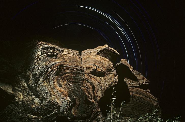 Фото №1 - Первые микроорганизмы могли появиться на суше