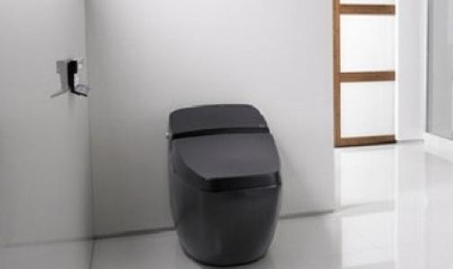 Фото №1 - ВОЗ хочет изобрести высокотехнологичный туалет для избавления от холеры, тифа и глистов