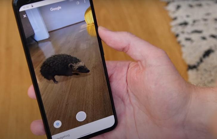 Фото №1 - Залипательное развлечение от Google: трехмерное животное прямо у тебя дома