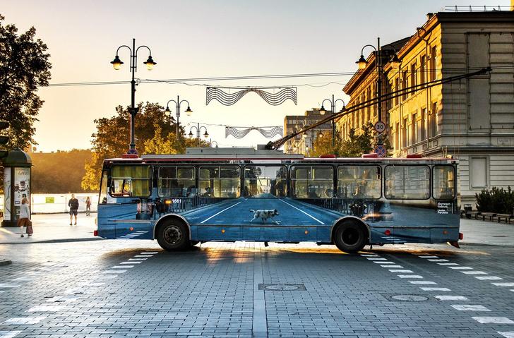 Фото №1 - 8 неожиданных фактов о самом рогатом виде транспорта