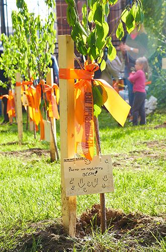 Фото №3 - 8 must-see фестиваля «Черешневый лес» от Ингеборги Дапкунайте