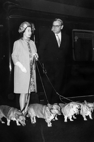 Фото №10 - 94-летняя Королева Елизавета II и ее рекорды