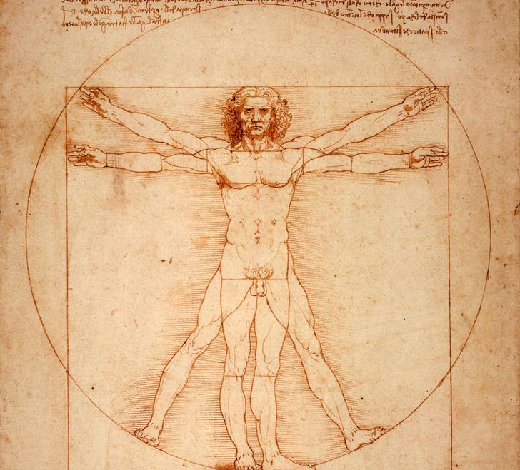 Фото №5 - Пять чудес: «дети» гения Леонардо
