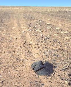 Фото №4 - Железный камень для белого человека
