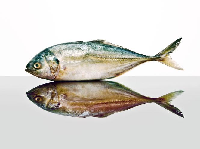 Фото №2 - 10 видов рыбы, которую лучше не есть