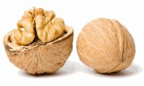 Фото №1 - Грецкие орехи: вкусно и очень полезно